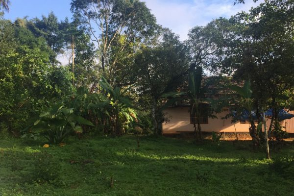 1.84 acre property at Manakkad, Thodupuzha. Best for Villa project and Plots