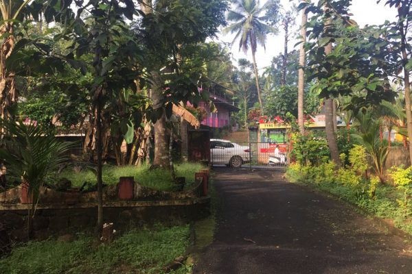 22 cent property at Thodupuzha town. Best for commercial building or luxury house.